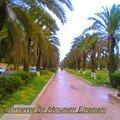 Jardin Cornette Meknes