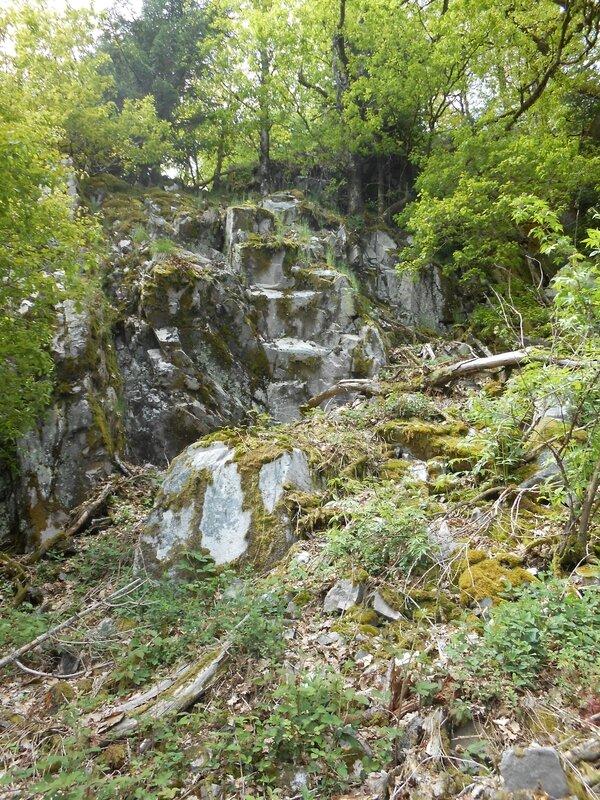 Chemin vers le Saint Mont (2)