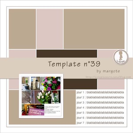 preview_template_n_39_by_margote