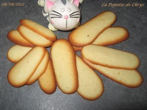 Langues de chat thermomix