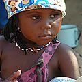 Le botswana : immersion dans le delta de l'okavango 1