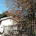 [valence] le jardin jean jullien-davin