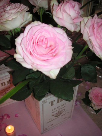 table_rose_f_te_des_m_res_032