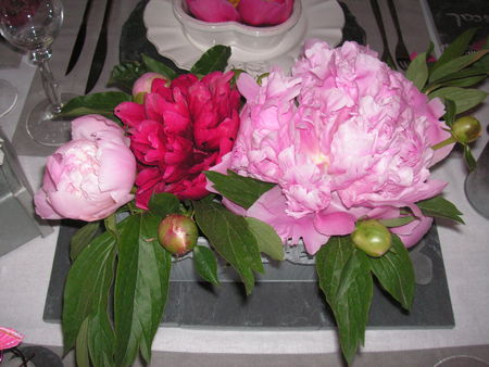 table_pivoines_006