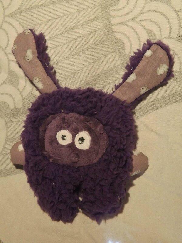 lapin violet mauve chatfildroit