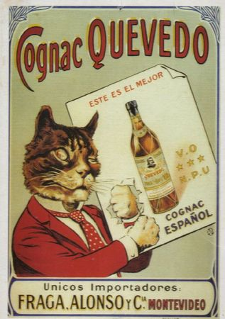 Affiches chats (3)