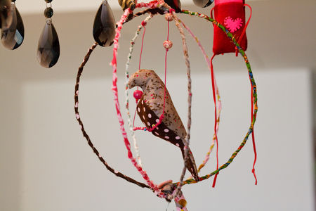 oiseau_concours__2_
