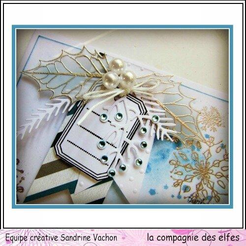 Voeux janvier DT LCDE sandrine VACHON (2)