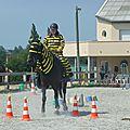 Jeux équestres manchots 2013 (220)
