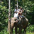 treck eleph DSCN2195