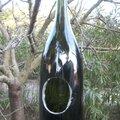 Champagne pour les oiseaux: un distributeur de graines avec une bouteille de champagne