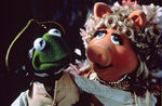 muppets_tr_sor_photo_09