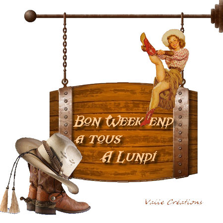 wend cowgirl2