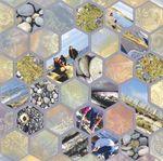 mer_hexagones_1_
