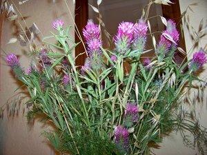 Bouquets_fleurs_d_ail__fleurs_champ_tres_011