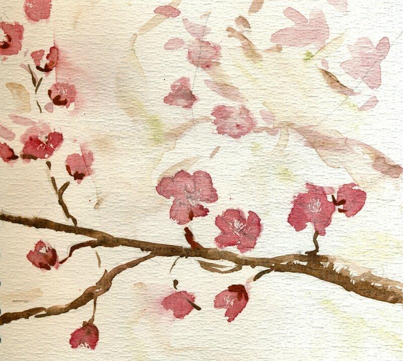 Prunus 2