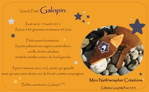 Faire_Part_Galopin
