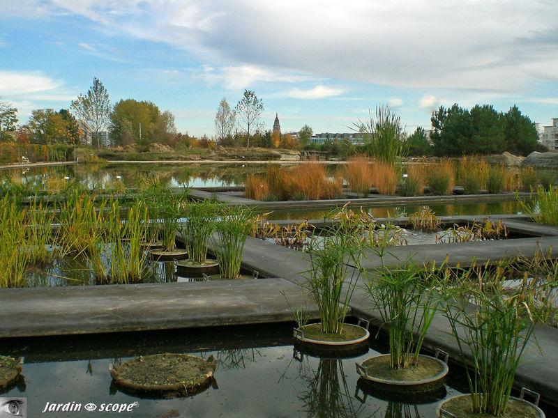 Le nouveau jardin botanique de bordeaux d couvrir le for Bordeaux jardin botanique