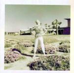 1953-puerto_penasco-2