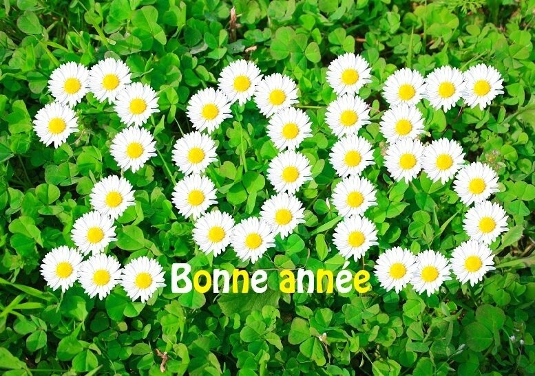 cartes-voeux-bonne-annee-2015-imprimer