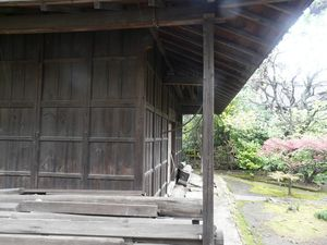 Canalblog_Tokyo03_20_Avril_2010_042