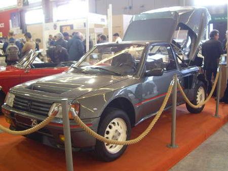 Peugeot205T16av