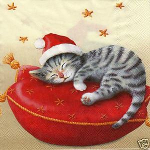 chat-coussin_Noel