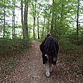 Mercredi 4 juin : la vieille-loye ==> port lesney 24 kms