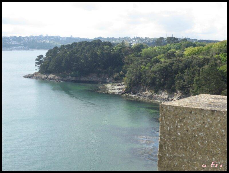 ballade 15 mai pont et plage (12)