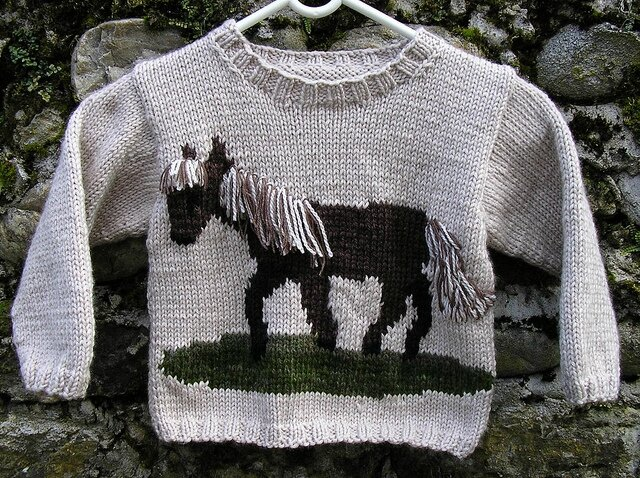 Pull cheval 1