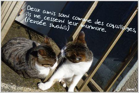 deux_amis