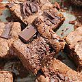 Brownies au chocolat sans matières grasses ! si ça existe ^^