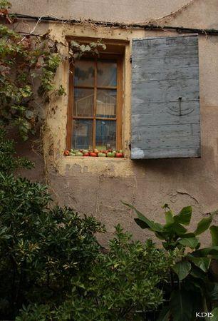 blog les tomates 2