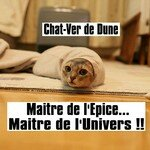 Chat_Ver_Dune