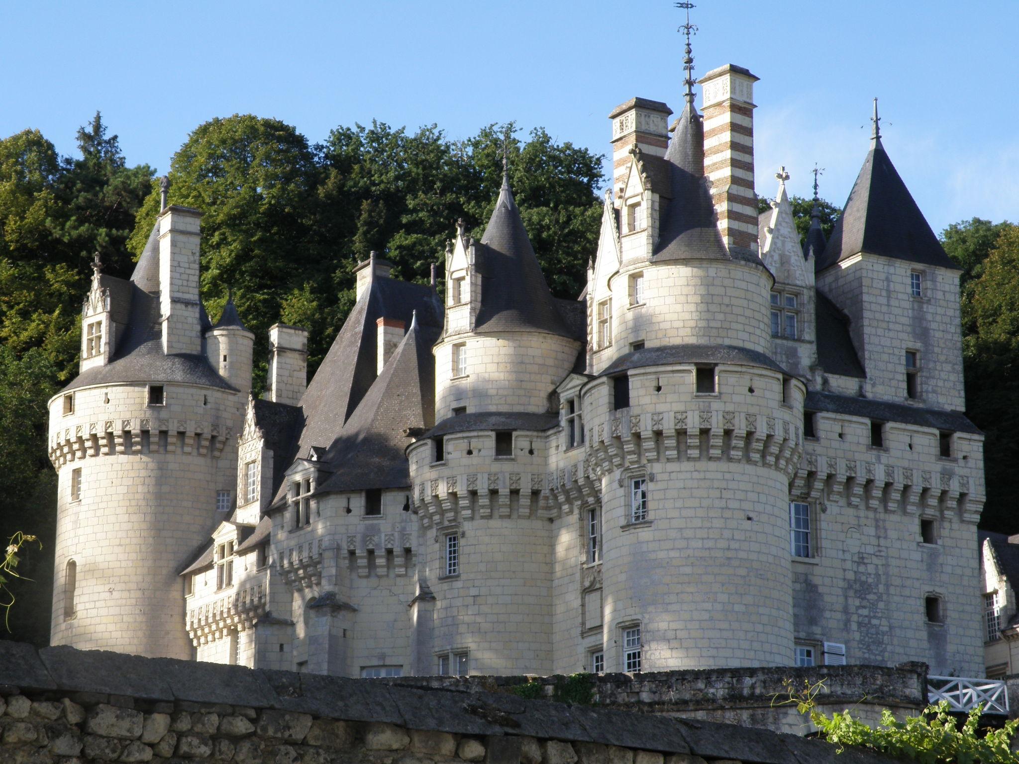 Chateau de la loire belle au bois dormant for La belle au bois flotte