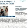*Articles presse et webzines