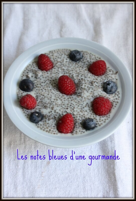 pudding_graine_de_chia_framboise_Les_notes_bleues_d_une_gourmande