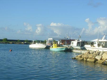 DSCN0518 Guadeloupe J9