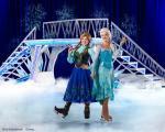 D15b_Frozen-1-800pxL