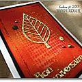 carte kibrille 02