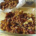 granola 01