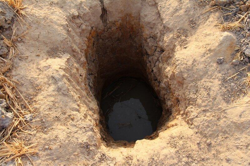 Béa a creusé des trous pour trouver l'eau douce...en attendant mieux...