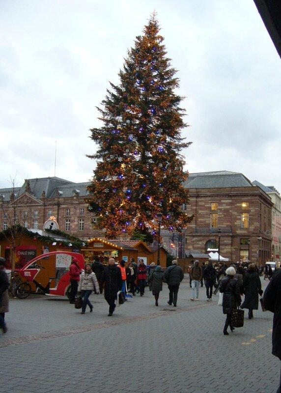 Strasbourg 048 sapin