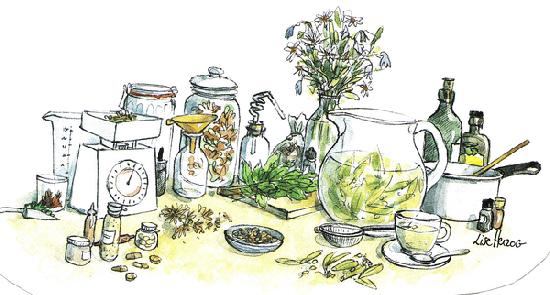 dessin naturopathie