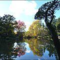 2012_11_11-POM-P1140419