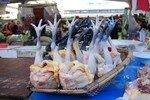 Dali_4_poulets