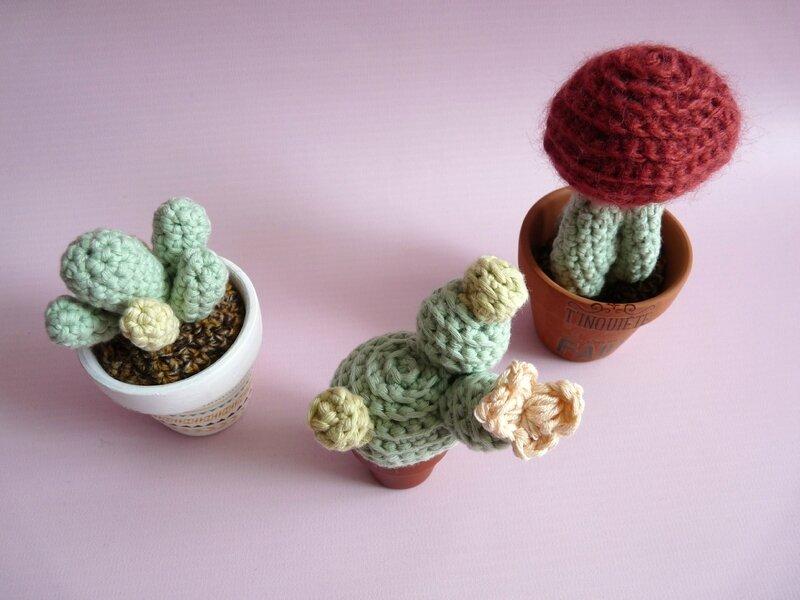 cactus crochet 02