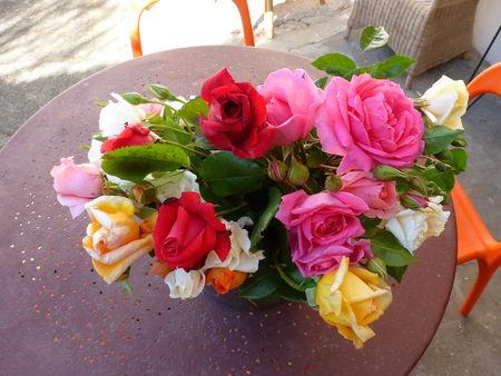 roses_003