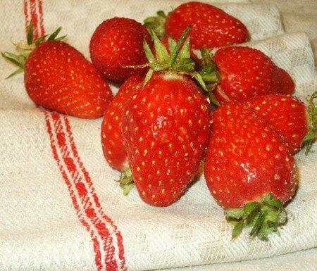 fraise1604