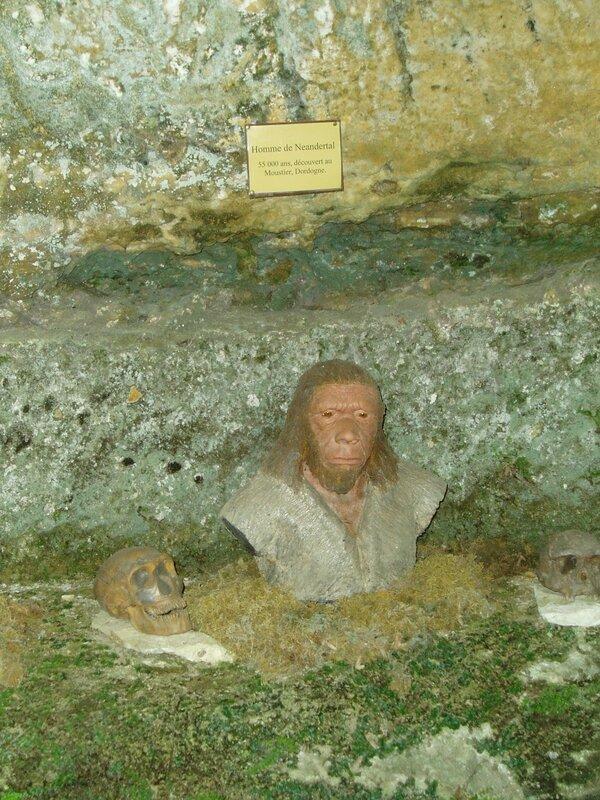 Neandertal (2)